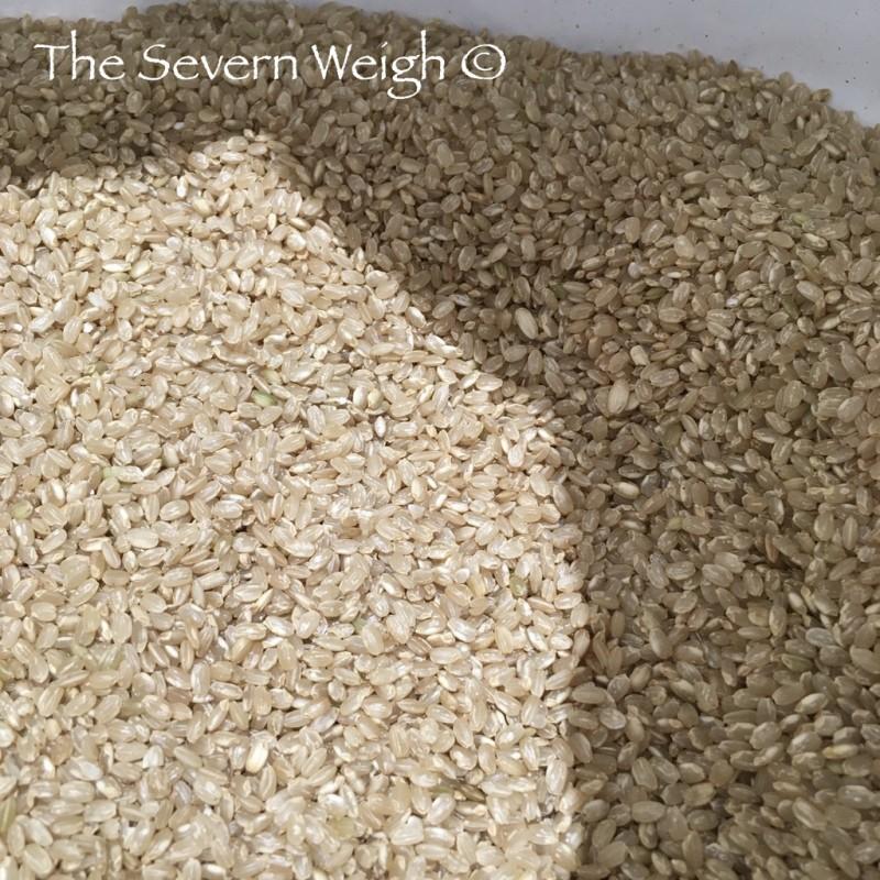 Brown Rice Short Grain Organic