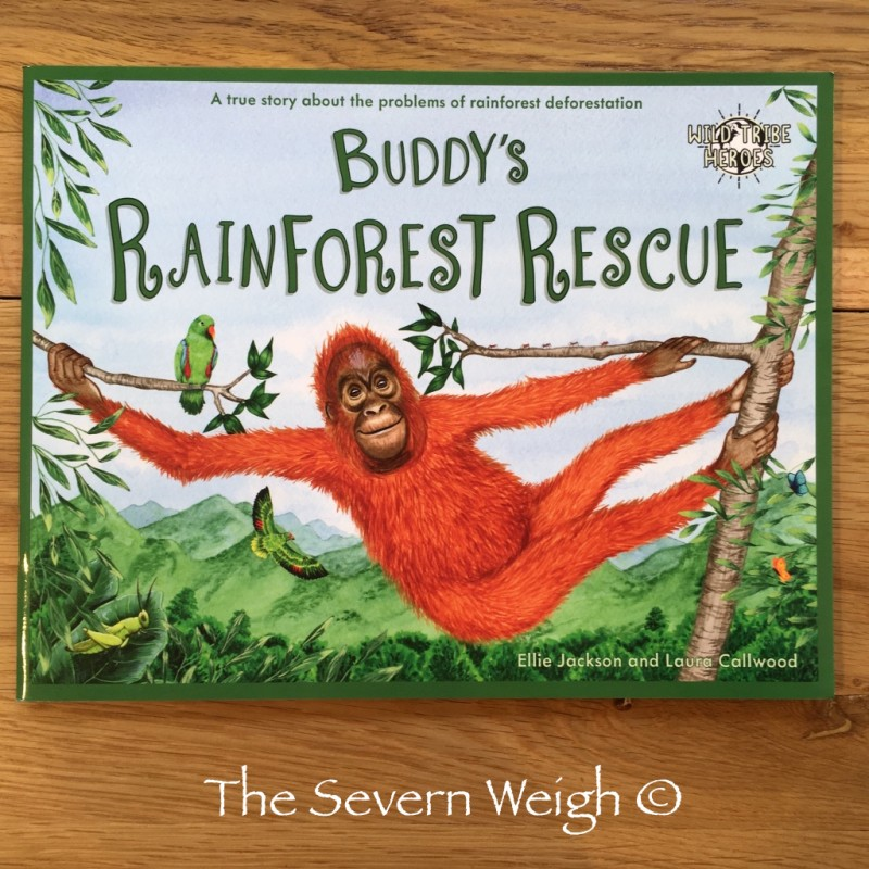 Buddy's Rainforest Rescue Book 4