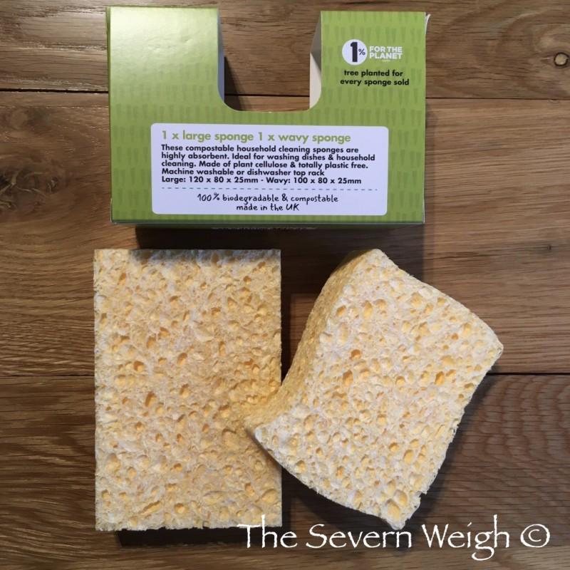 2 Natural Plant Based Sponges