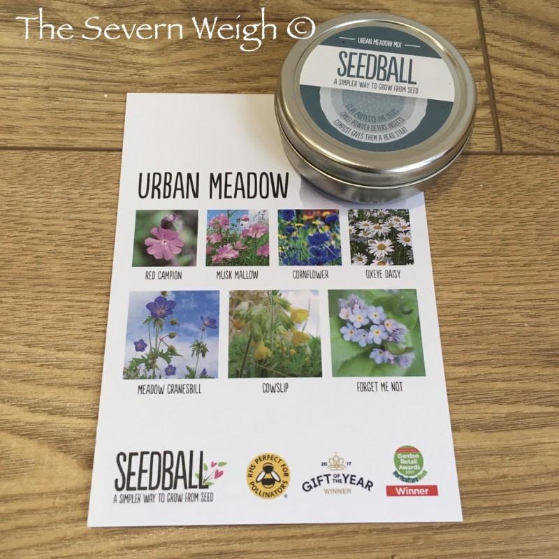 Seedball Tin: Urban Meadow, plastic free.